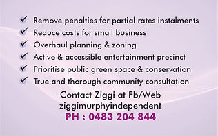 Ziggi Business card 2.jpg