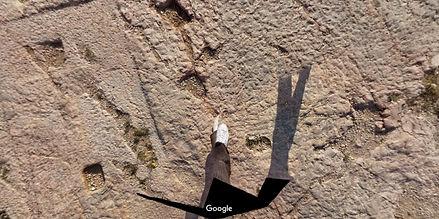 Nick Petryna - Google Maps-1.jpg