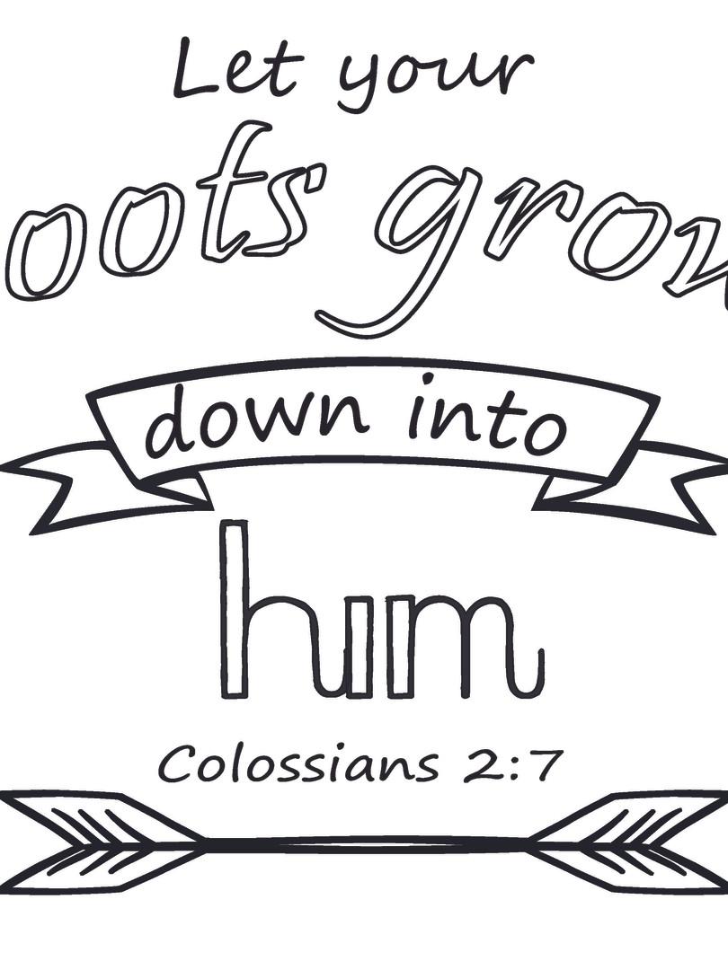 Colossians - T Shirt