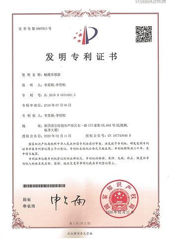 ChinaPatent30.jpg