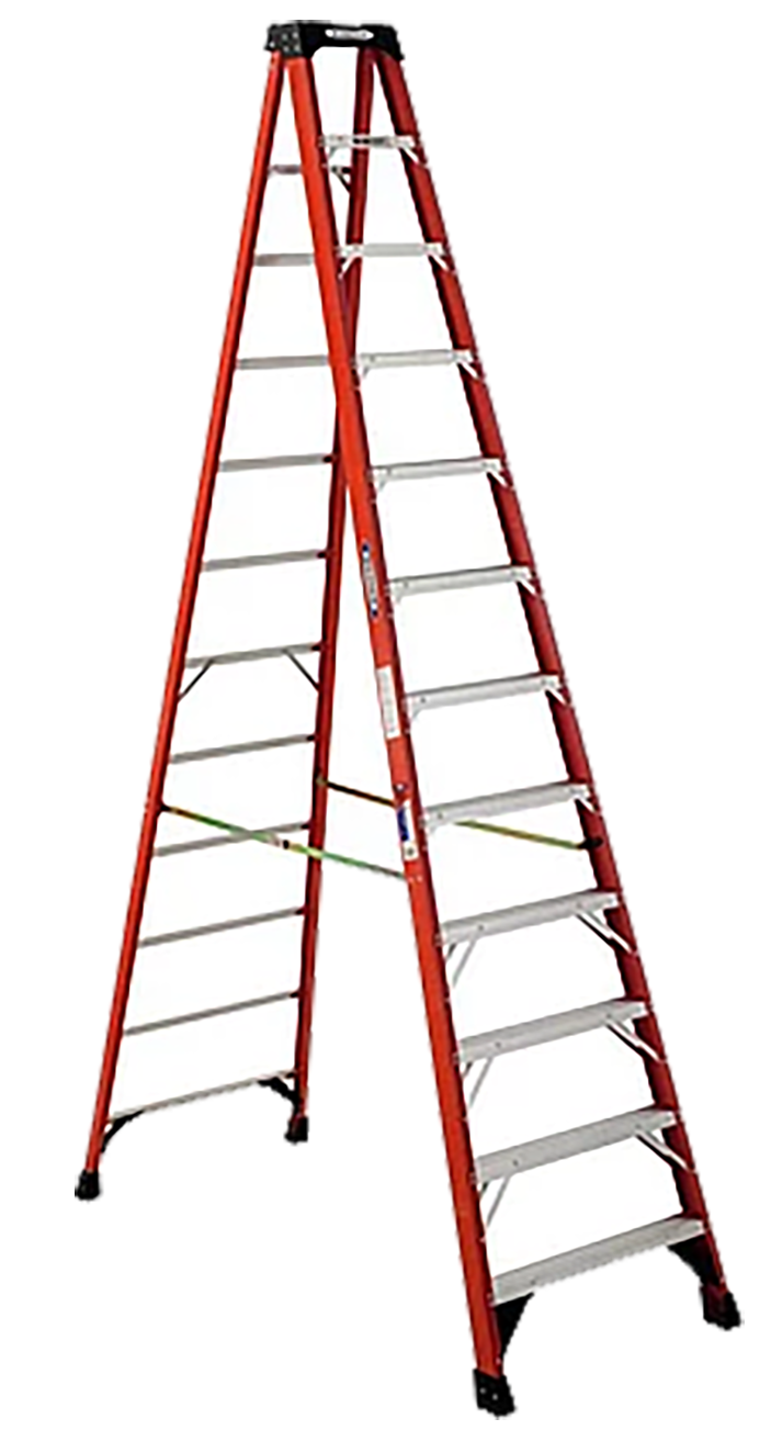 12'_Step_Ladder web