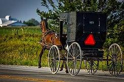 Amishstock.jpg