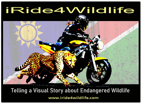 New irdie4wildlife logo Oct2019.jpg