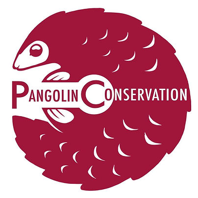 Pangolin Conservation.jpg