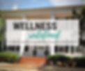 Wellness Redefined 2020.png