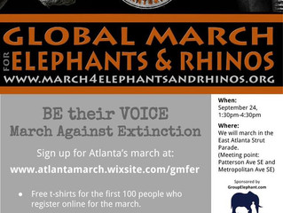 Global March for Elephants and Rhinos