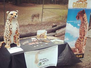 International Cheetah Day at Chehaw