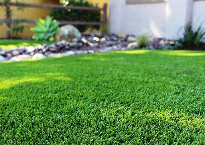 grasscloseup.jpg