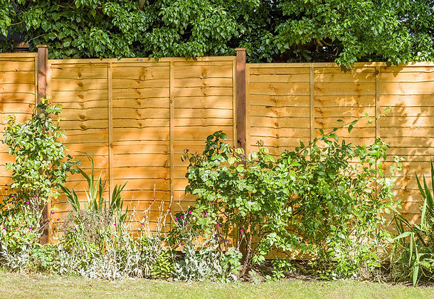 Treated Timber Golden Overlap Fence Panel 1829 x 1524mm