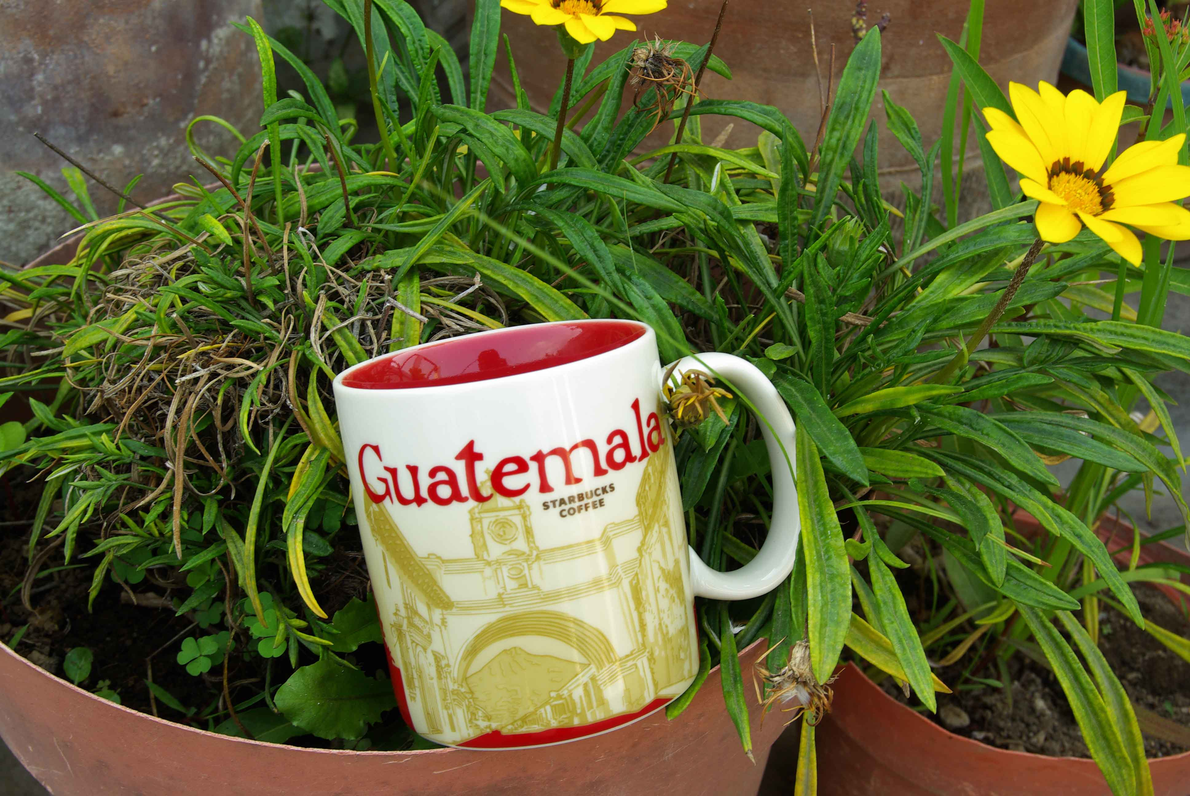 グアテマラのスタバマグカップ