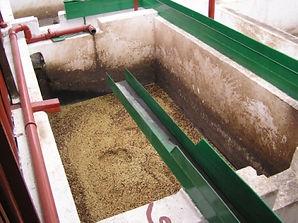 コーヒー豆 水洗式精製