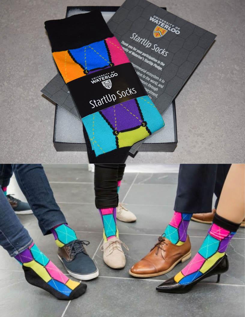 StartUp Pledge sock design