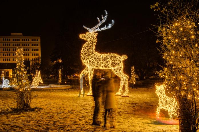 Renne lumineux de Noël