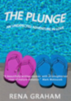 The Plunge book cover Feb 2019 low res.j