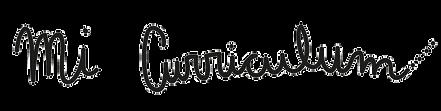 mi curriculum letras web_edited.png