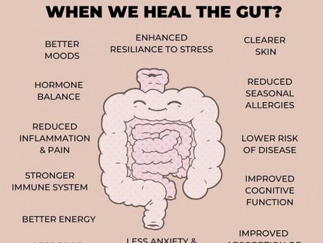 Healthy Gut = Healthy Body