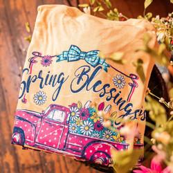 SPRING BLESSINGS 2