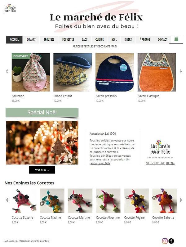 Capture d'écran Site.jpg
