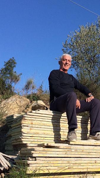 Die Ernte der Taggiasca Olive - in aufwendiger Handarbeit verwertet