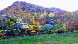 Colorful autmn view of Mt.Zenibako Tengu/