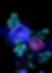 dark-alice_0019_floral.png