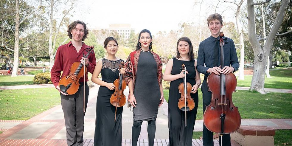 VEM Ensemble