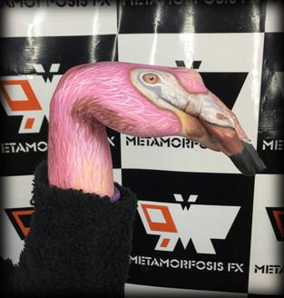 Artistico - Manos animales
