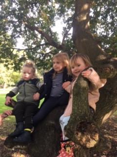 Up tree.JPG