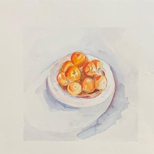 6x6 watercolor