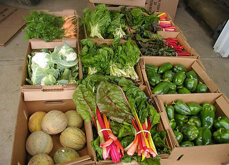 boxes-of-produce.jpg