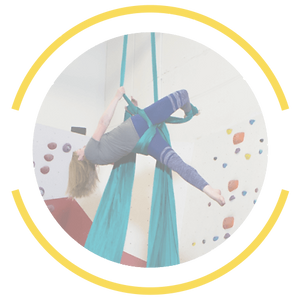 Aerial Silks Hover.png
