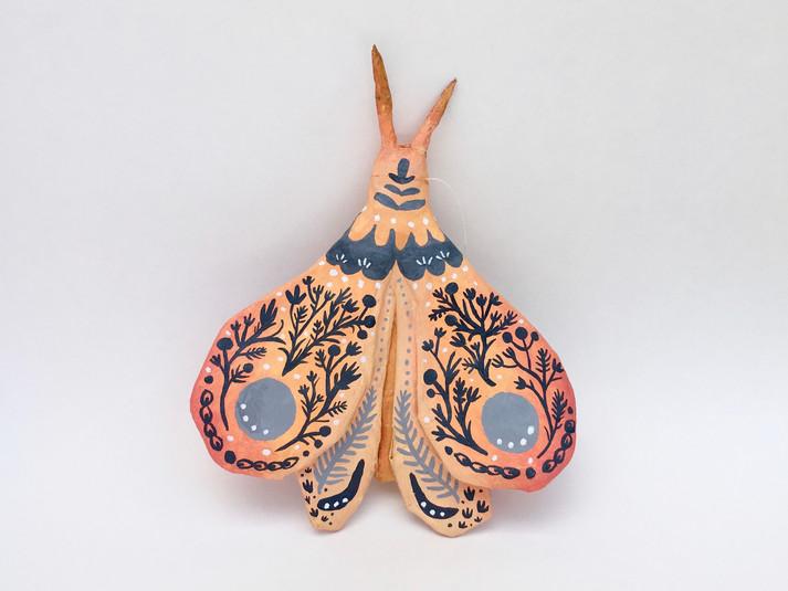 Garden Moth