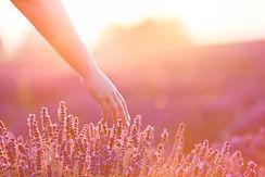 massage soin énergétique intuitif soustons seignosse tosse