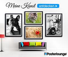 Fotografien als zeitlose Schwarz Weiß Fotografie oder bunte Fotoposter von Falko Follert