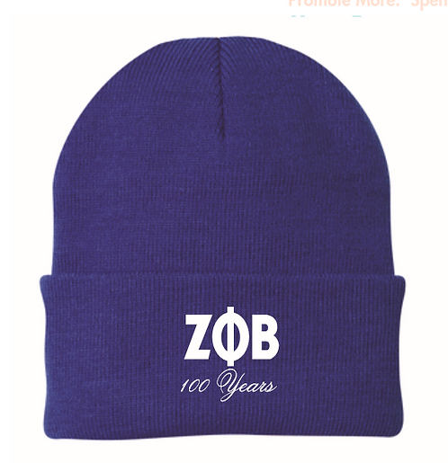 Zeta Phi Beta 100 Years Beanie
