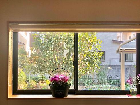 window_23_0203.jpeg