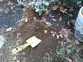 Soil_03_0207_05.JPG