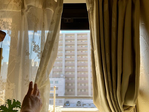 window_15_0204(WSより_鈴木2).jpg