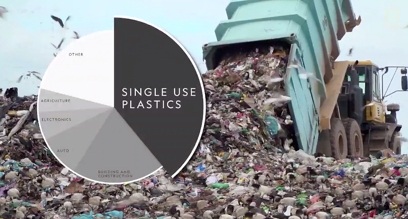 Plastic in the Environment.png