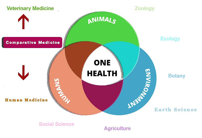 Comparative Medicine.jpg