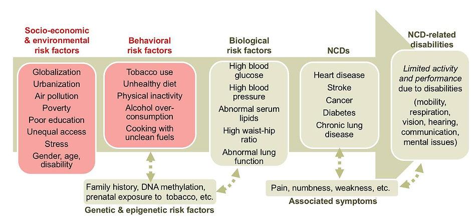One Health NCD.jpg