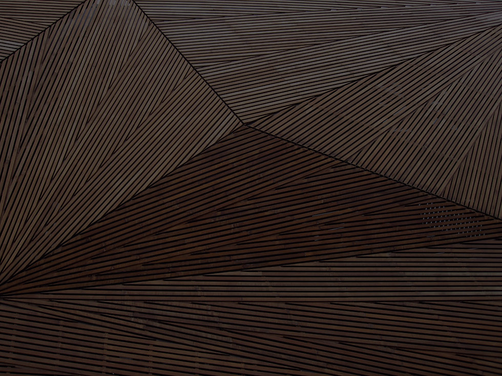 Wooden%25252520Architecture_edited_edite