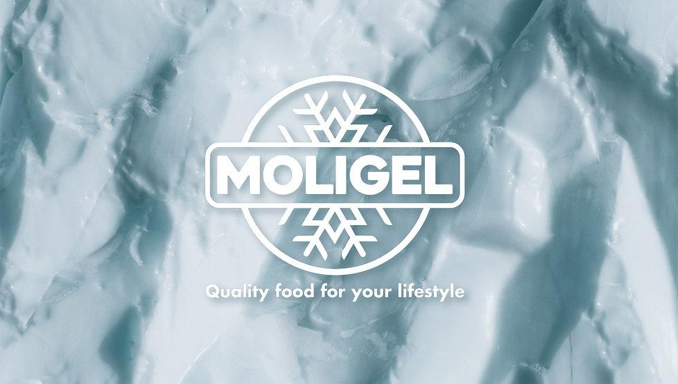 Progetto grafico e realizzazionelogo aziendale Moligel