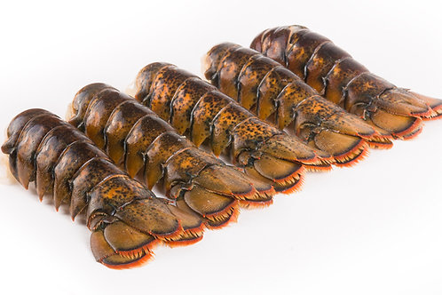 4-Pack of Lobster Tails - 7-8oz.