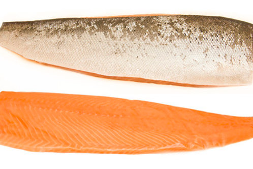 Norwegian Salmon Fillets