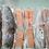 Thumbnail: Fish Entree Variety Box