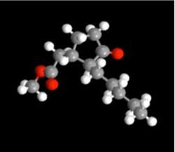 Synthèse_bio-inspirée_d'agents_de_biocon