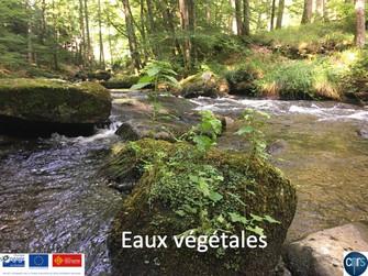 """Lancement du projet FEDER """"Eaux végétales"""" jeudi 14 mars à Saint-Laurent-Le-Minier"""