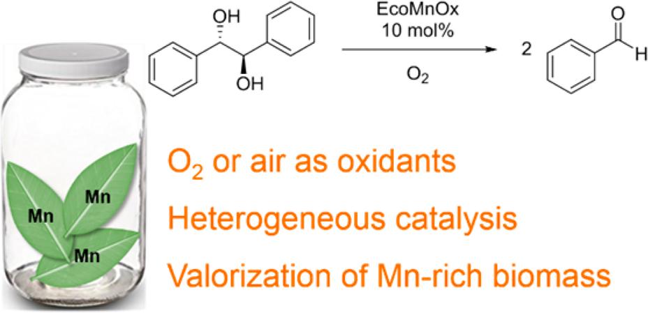 la collaboration entre ChimEco et le laboratoire du Pr Anastas (Univ. Yale) vient de se concrétiser par la synthèse d'une nouvelle génération d'écocatalyseurs oxydants : les EcoMnOx.
