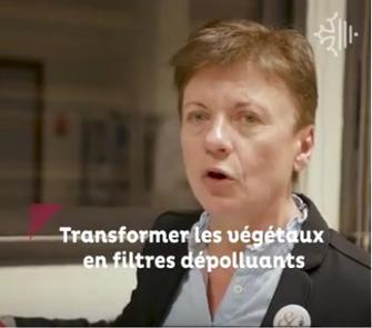 """Le projet FEDER """"Eaux végétales"""" mis à l'honneur par la Région Occitanie"""